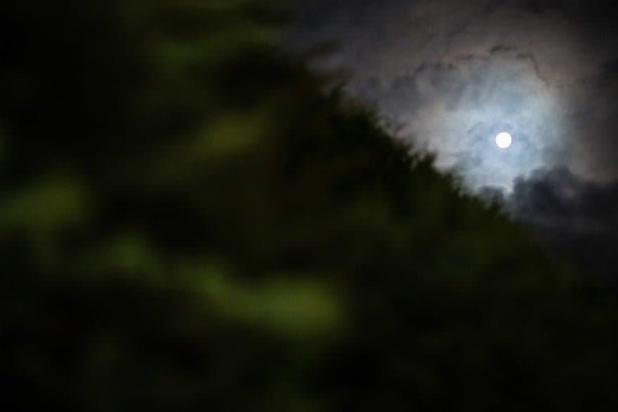 Noche en el Pazo A Toxeiriña durante una boda